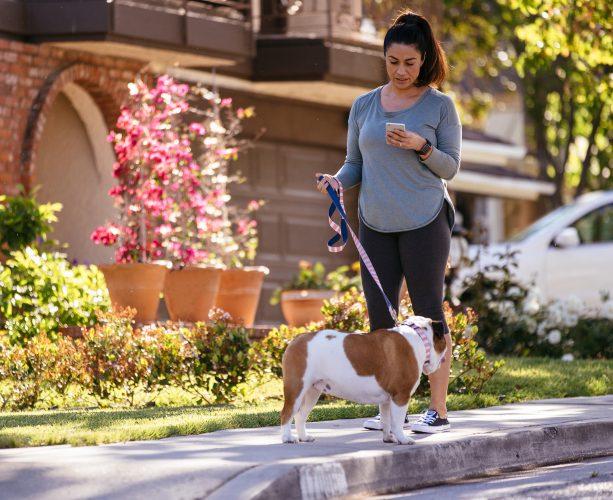 Woman gets vivint doorbell alert while walking a dog